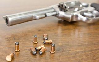 Патрон Флобера — что это: принцип действия, оружие в России, фото, револьвер, пистолет, винтовка, нужно ли разрешение