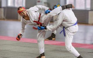 Видео уроки приемов рукопашного боя — для начинающих и для желающих узнать запрещенные удары