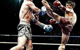 Как правильно бить Лоу Кик: техника, Low-kick, защита в тайском боксе