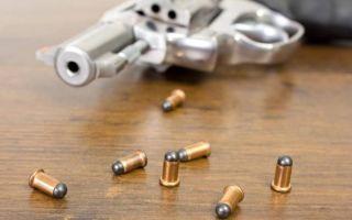 История патрона Флобера и обзор подходящего оружия