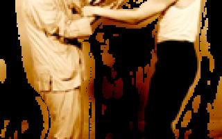 Что такое стиль Вин-Чунь: Wing Chun, Кунг фу, мастера, ушу, история, техника
