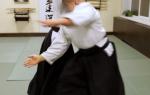 Айкидо есинкан и айкикай что сильнее и в чем разница стилей