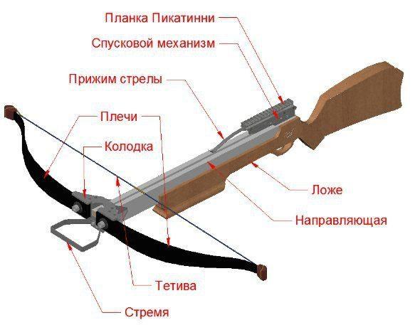 описание частей арбалета