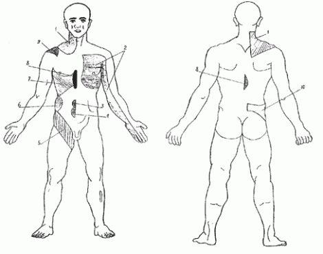 точки на спине