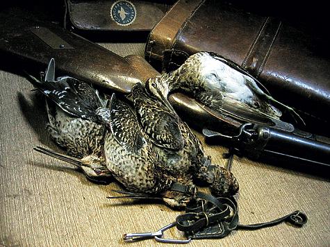 Какой дробью стрелять: зайца, утку, рябчика, дичь, осенью, зимой, весной, таблицы размеров в мм по номерам