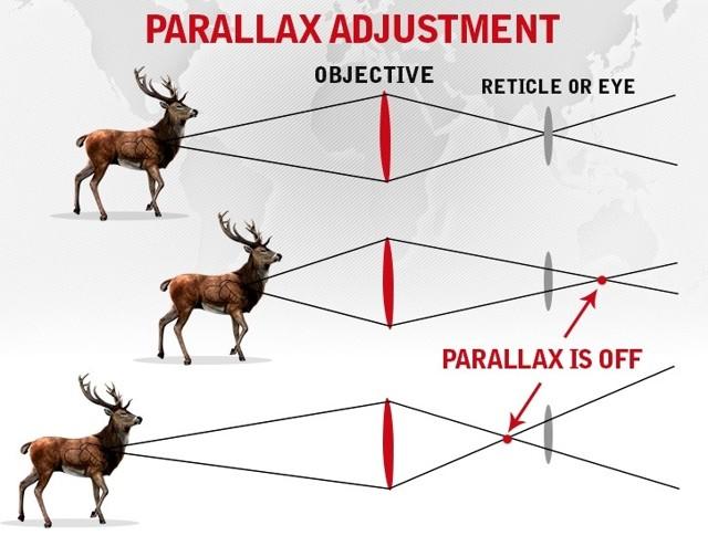 Охотничьи прицелы на карабин: какую купить оптику, как правильно выбрать, обзор различных моделей