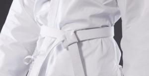 Пояса в карате: каратэ до, киокушинкай, сколько поясов, даны, цвета, черный, желтый, оранжевый, за что дают, коричневый