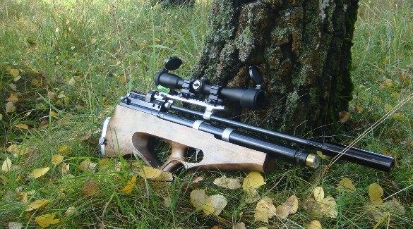Как правильно выбрать пневматическую винтовку для охоты