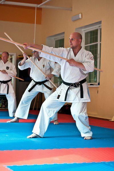 Боевое искусство кобудо: кобудзюцу, kobudo, каратэ, официальный сайт, ходзе ундо, оружие